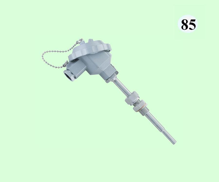 WZPK-226S热电阻